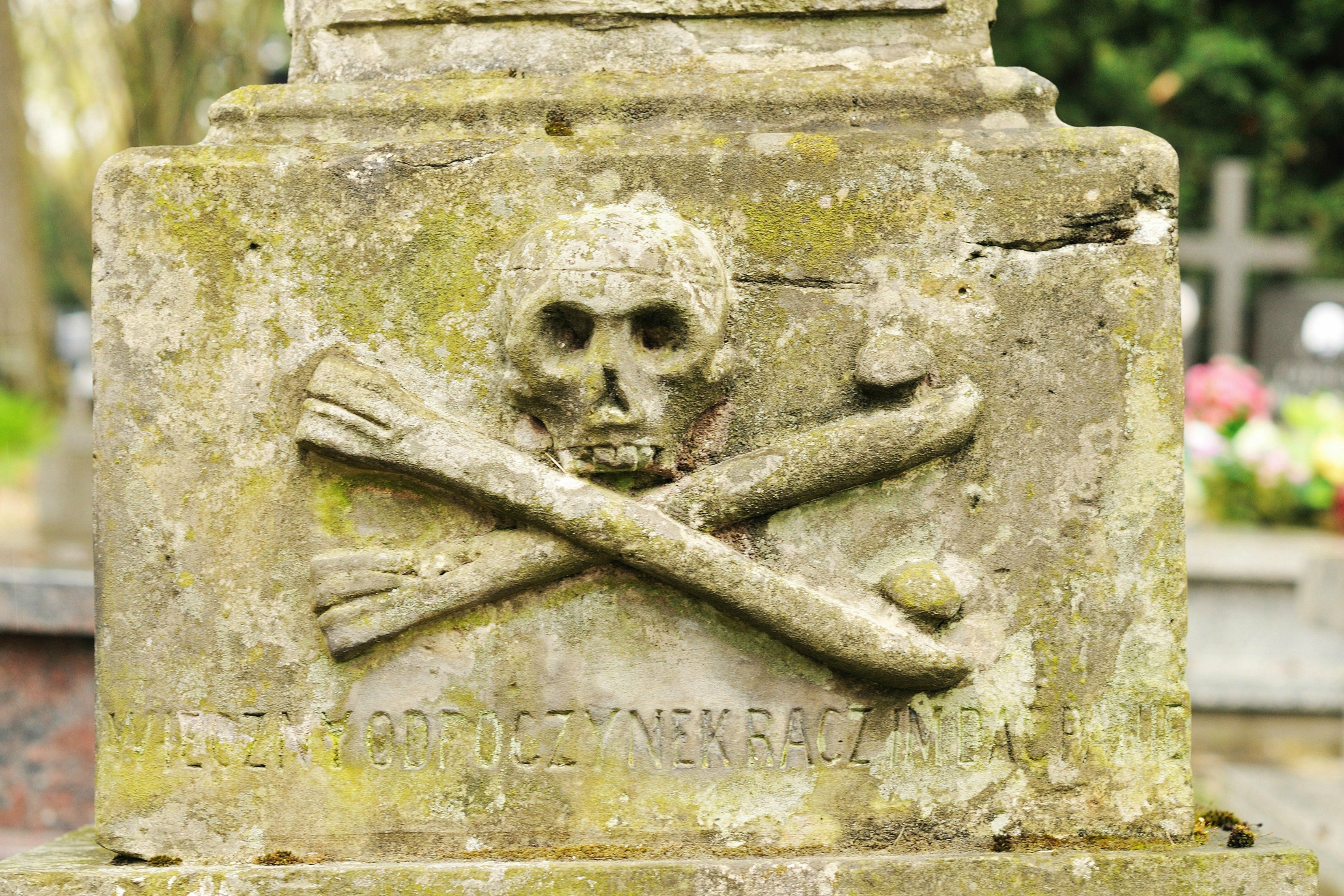 how to get into skull and bones